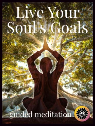 life your souls goals meditation shereen baird small